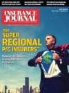 Insurance Journal Southeast 2010-05-17